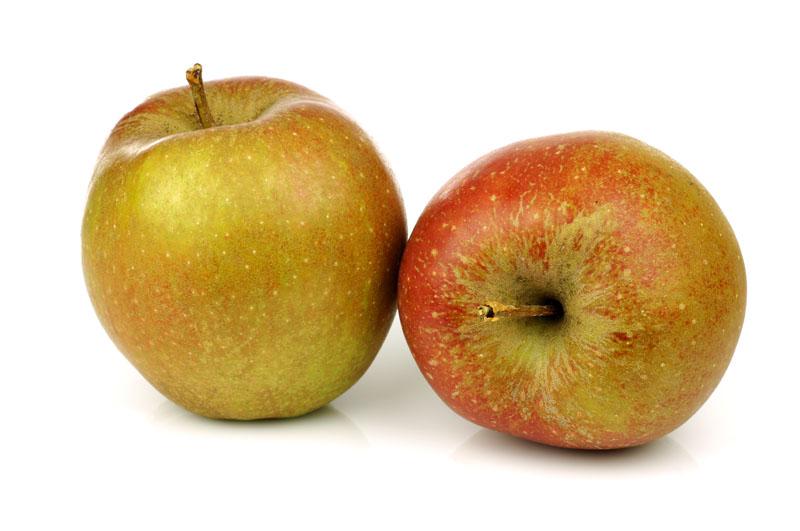Beste Appels voor Appeltaart, Goudreinet